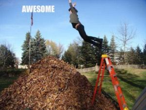awesome-leaf-jumping-pile