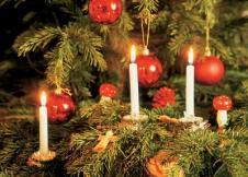 live candle christmas tree