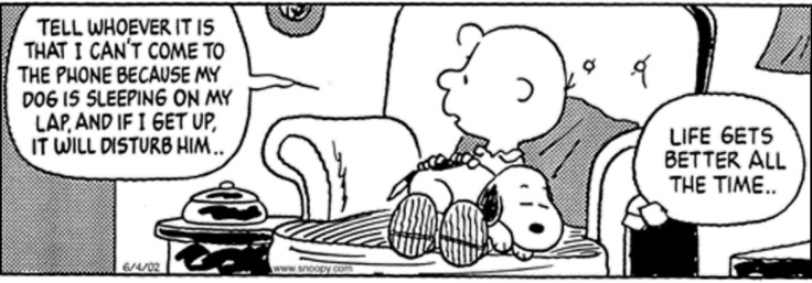 peanuts snoopy life gets better