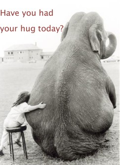 Have you had your hug today