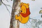 Pooh bear tumbling down the tree