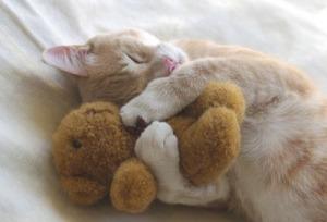 cozy heart hug